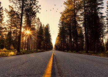 The Essence Of Regular Road Construction Surveys
