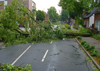 Insight on Cleaning Up After Disaster Strikes – Effective Ways to Minimize Hassle